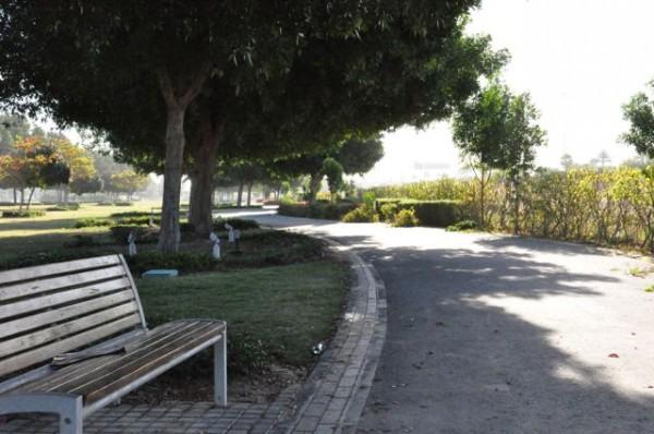 DSC 0071 e1425009454971 - A Hidden Haven - Yas Gateway Park