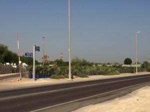HWAD AL bahia 12 300x225 - Al Bahia Plant Nursery